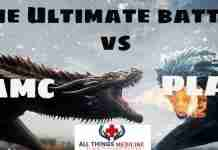 AMC vs PLAB the ultimate comparison