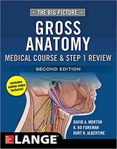 the-big-picture-gross-anatomy-pdf