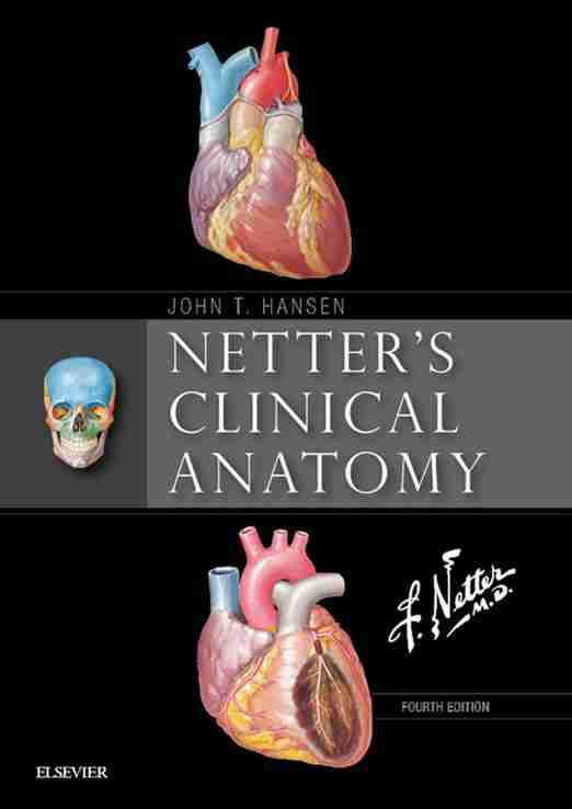 netter's-clinical-anatomy-4th-edition-pdf